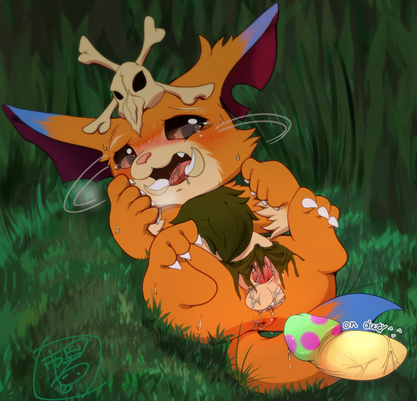 Photo of Gnar